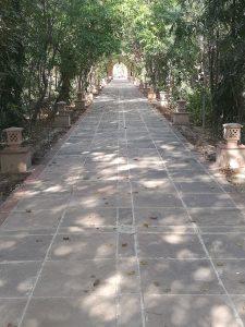 Zwischenstopp in Bharatpur und dem Keoladeo - Nationalpark. Einst das private Entenjagd-Gebiet des Maharadschas, heute UNESCO Weltnaturerbe.