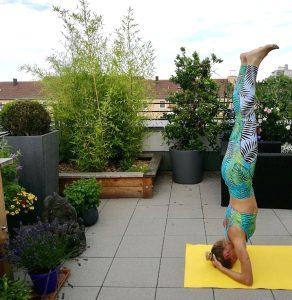 Als ich vor 25 Jahren meine erste Yoga-Stunde hatte, wurden Yogis als esotherisch abgetan, man beäugte sie mit Mißtrauen, betrachtete sie als weltfremd.